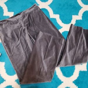 The limited bootcut pants size 10